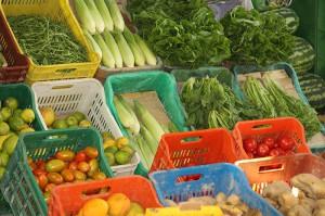 Die gespendeten Lebensmittel des Erntedankumzugs werden dem Kinderheim Kastanienhof weitergeben.